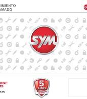 KIT VALIDO PARA REVISIONES 2/4/6/8/10/12/14/16 SYMPHONY ST/JET14 125
